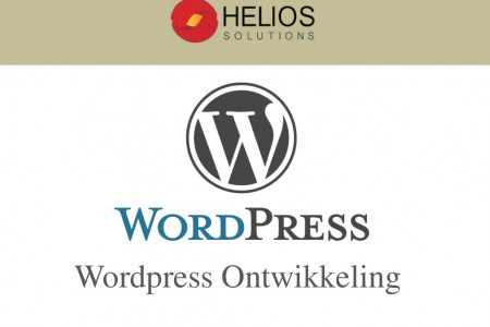 Wordpress Specialist Infographic