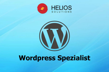Wordpress Spezialist Infographic