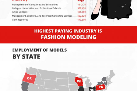 Worlds of Modelique, Where Models Meet the Professionals. Infographic