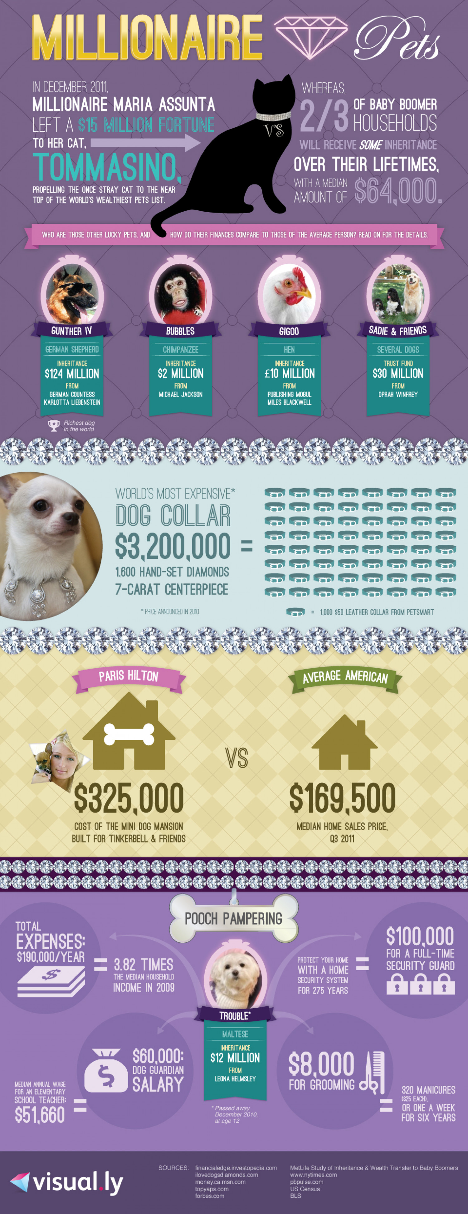 World's Wealthiest Pets Infographic