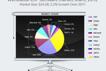 Worldwide ERP Software Market Shares Infographic