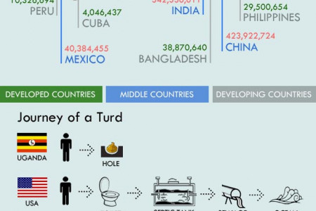 Worldwide Poop Facts Infographic