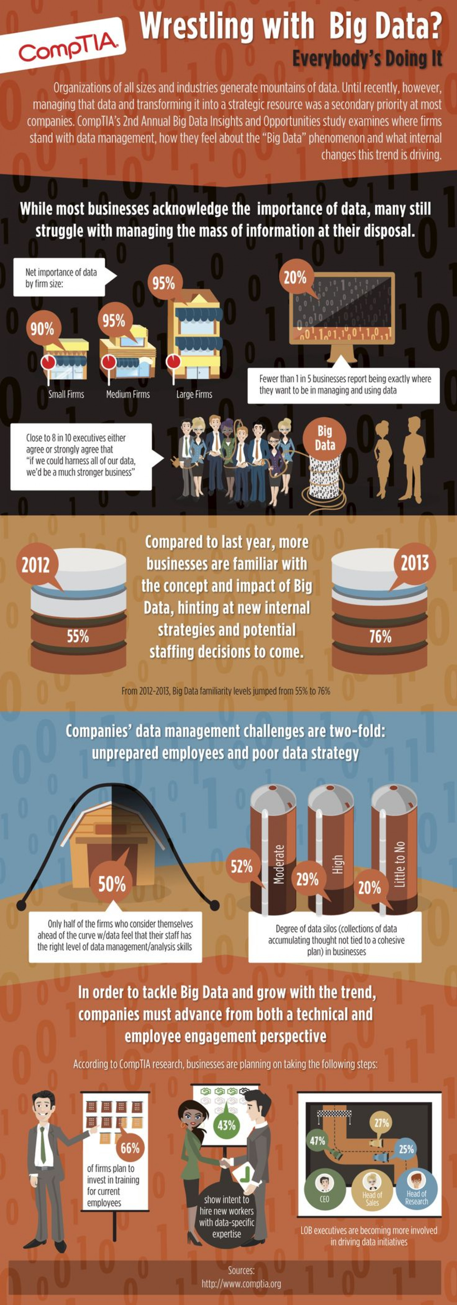 Wrestling With Big Data? Infographic