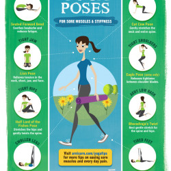 yoga poses for sore muscles  stiffness  visually