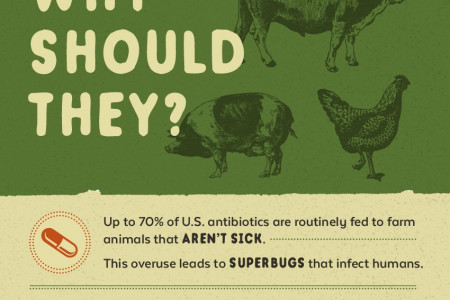 You Wouldn't Take Antibiotics With Every Meal Infographic