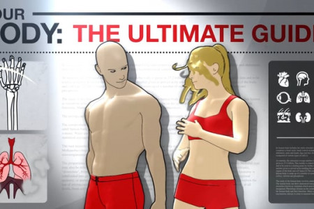 Your Body: The Ultimate Guide | Blood Infographic