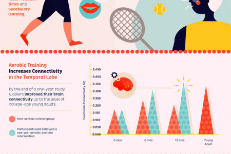Your Brain on Exercise Infographic
