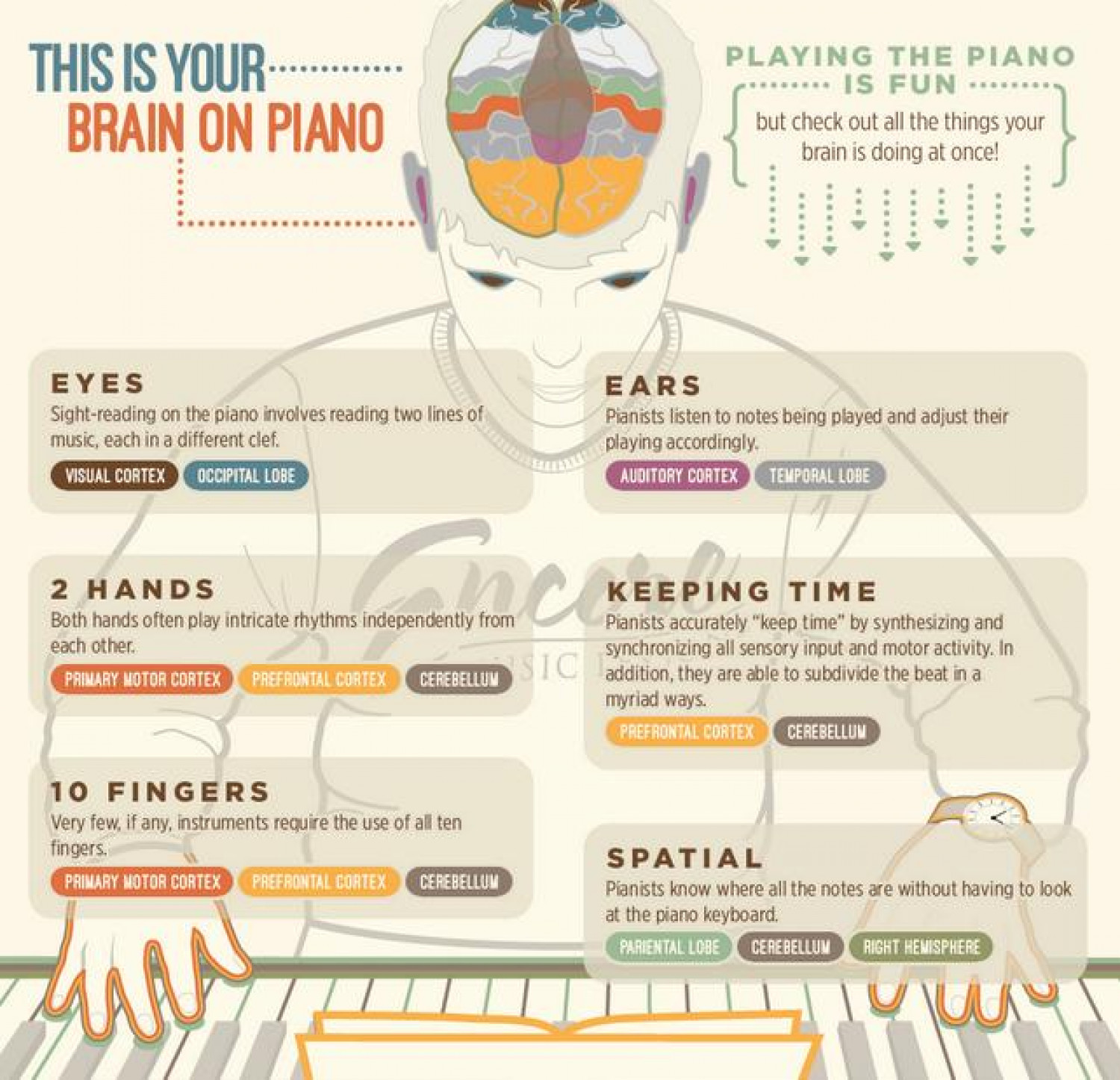 Your Brain on Piano Infographic