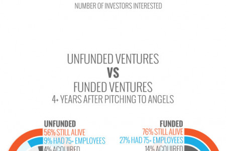 Your Chances of Angel Investment Infographic