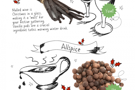 Your Christmas Guide to Herbs and Spices Infographic