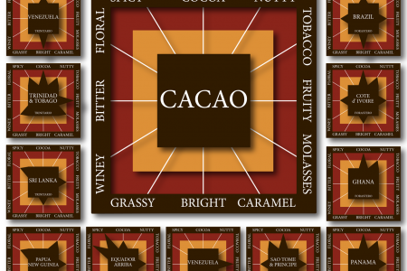 Your Complete Guide to Chocolate Flavors Infographic
