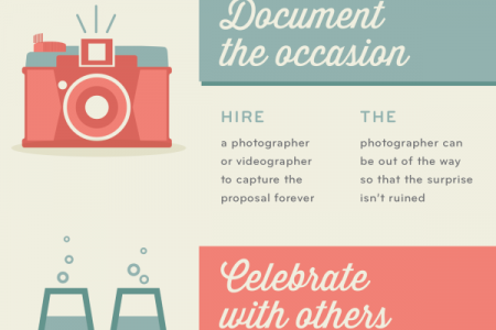 Your Guide to Planning a Marriage Proposal  Infographic