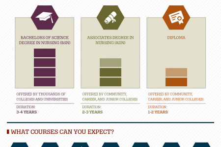 Your RN Education : What to Expect Infographic