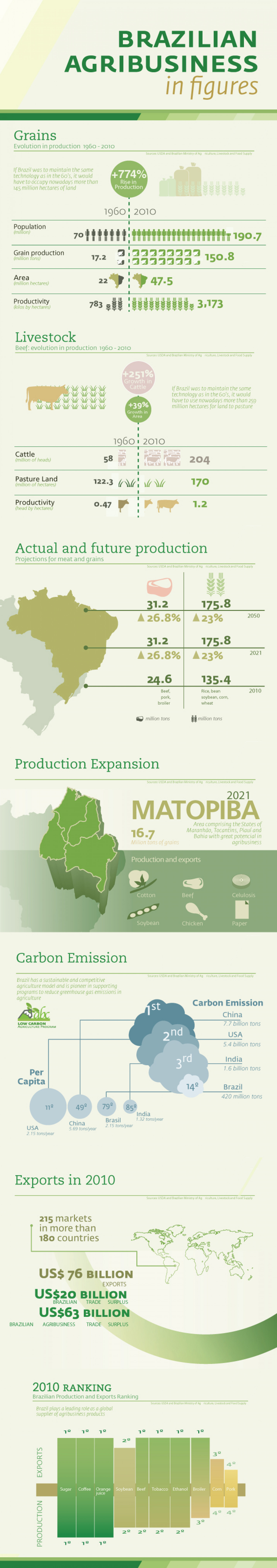 Brazilian Agribussiness Infographic